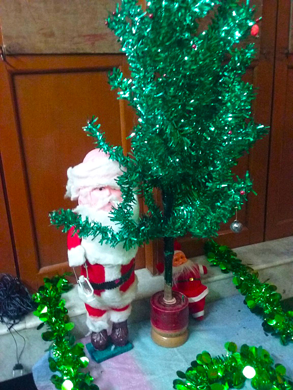 shuktara home for disabled girls - 2016 December - Christmas tree at Lula Bari