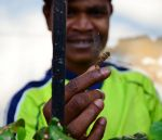 shuktara - 2014 - caught a dragonfly