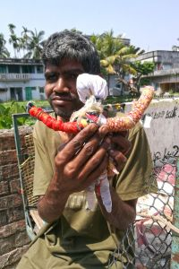 shuktara home for boys with disabilities - 2017 March - Sunil holding his doll
